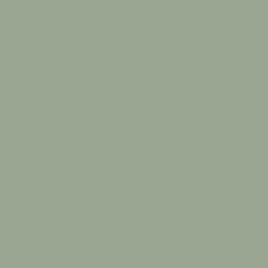 Vallejo Model Air Color Colour Ija Light Gray Grey Green