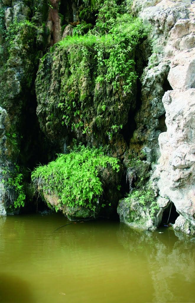 still water texture. Delighful Texture On Still Water Texture