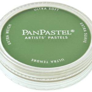 PanPastel Chromium Oxide Green 660.5 26605