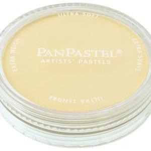 PanPastel Diarylide Yellow Tint 250.8 22508