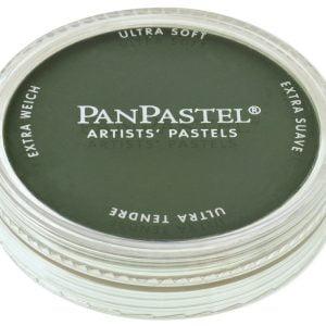 PanPastel Permanent Green Extra Dark 640.1 26401