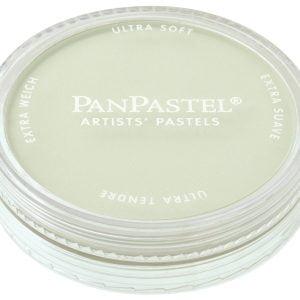 PanPastel Chromium Oxide Green Tint 660.8 26608