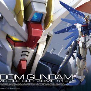 Bandai #05 Freedom Gundam ZGMF-X10A RG 1/144 Scale 171625