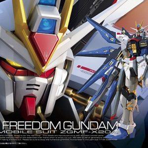 Bandai Strike Freedom Gundam RG 185139
