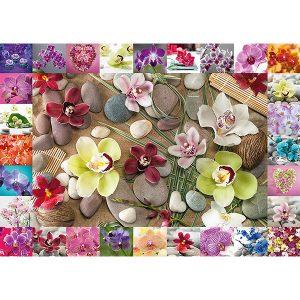 Schmidt 1000 Piece Puzzle Orchids 59632