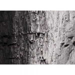 Woodland Scenics Black Terrain Paint 4 Oz C1220