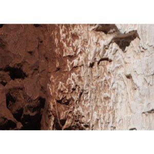 Woodland Scenics Burnt Umber Terrain Paint 4 Oz C1222